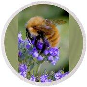 Fuzzy Honey Bee Round Beach Towel