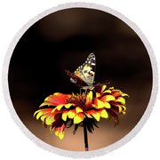 Gaillardia And Butterfly Round Beach Towel
