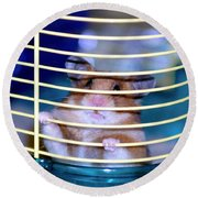 Gangster Hamster Round Beach Towel
