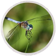 Garden Dragonfly Round Beach Towel