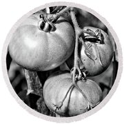 Garden Tomatoes In Black And White Round Beach Towel