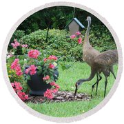 Garden Visitors Round Beach Towel