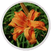 Garden With A Blooming Double Daylily Flowering Round Beach Towel