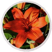 Garden With Lily Buds And A Blooming Orange Lily Round Beach Towel