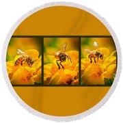 Gathering Pollen Triptych Round Beach Towel