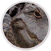 Gator Eye Round Beach Towel