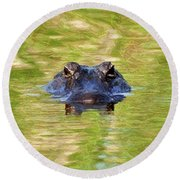 Gator In The Green - Digital Art Round Beach Towel