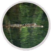 Gator In The Spring Round Beach Towel