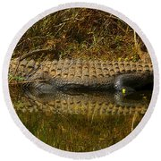 Gator Relection Round Beach Towel