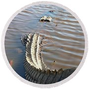 Gator Tail Round Beach Towel