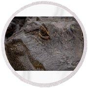 Gators Eye Round Beach Towel