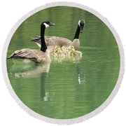 Geese And Babies Round Beach Towel