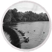 Ducks And Canada Geese On The Charles River Round Beach Towel