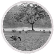 Geese On A Rainy Day Round Beach Towel