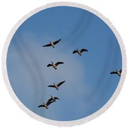 Geese Round Beach Towel
