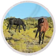 Gems Of Cold Creek Round Beach Towel
