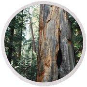 General Grant Grove Sequoia Round Beach Towel