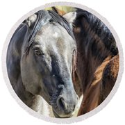 Gentle Face Of A Wild Horse Round Beach Towel