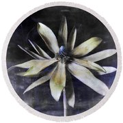 Genus Protea Round Beach Towel