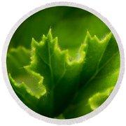 Geranium Leaf Round Beach Towel