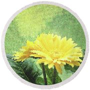 Gerber Daisy And Reflection Round Beach Towel