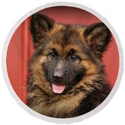 German Shepherd Puppy - Queena Round Beach Towel