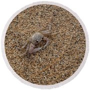 Ghost Crab Round Beach Towel