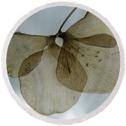 Ghost Of A Flower  Round Beach Towel