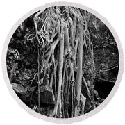 Ghostly Roots - Bw Round Beach Towel