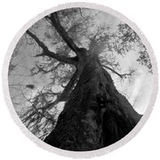 Ghostly Tree Round Beach Towel