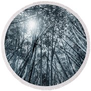 Giant Bamboo In Forest With Sunflare, Black And White Round Beach Towel
