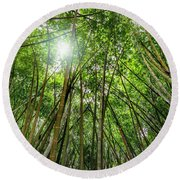 Giant Bamboo In Forest With Sunflare Round Beach Towel