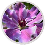 Giant Clematis Round Beach Towel