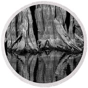 Giant Cypress Tree Trunk And Reflection 2 Round Beach Towel