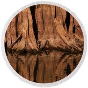 Giant Cypress Tree Trunk And Reflection Round Beach Towel