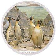 Giant Penguins, C1900 Round Beach Towel