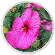 Giant Pink Hibiscus Round Beach Towel