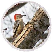 Giant Red Headed Woodpecker  Round Beach Towel