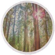 Giant Sequoias Round Beach Towel