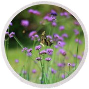 Giant Swallowtail Butterfly In Purple Field Round Beach Towel