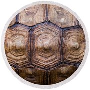 Giant Tortoise Carapace Round Beach Towel
