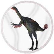 Gigantoraptor Dinosaur On White Round Beach Towel