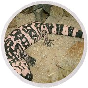 Gila Monster Round Beach Towel