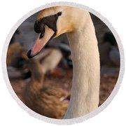 Ginger Swan Round Beach Towel