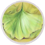 Ginkgo On The Cusp Of Autumn Round Beach Towel