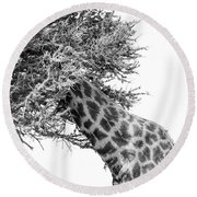 Giraffe Hide And Seek Round Beach Towel