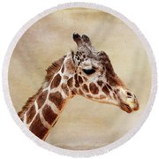 Giraffe Portrait With Texture Round Beach Towel
