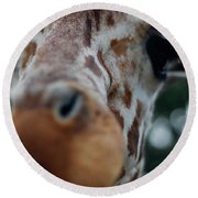 Giraffe Nose Round Beach Towel