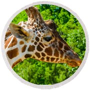 Giraffe Profile Round Beach Towel