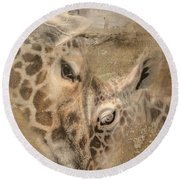 Giraffes, Big And Small Round Beach Towel